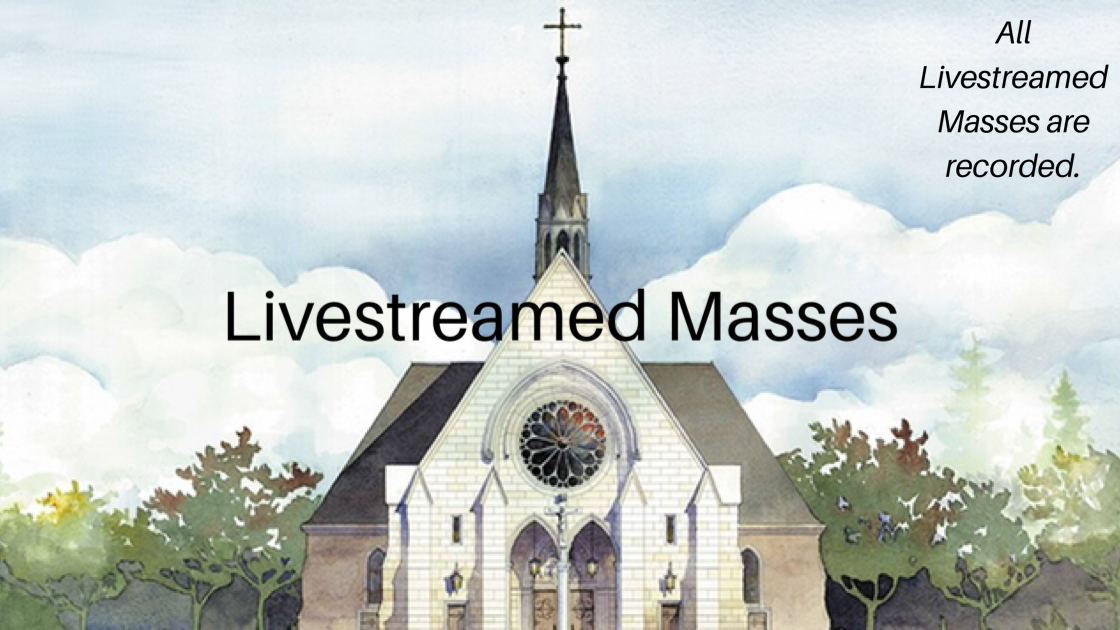 Updated Livestream Mass Recordings